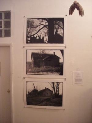 Pinhole Photographs